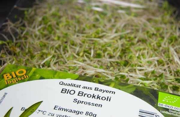 Packung gekaufter Brokkolisprossen